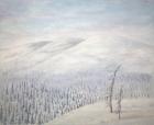Hiljaisuus 2007, Auli Muurinen-Kitula